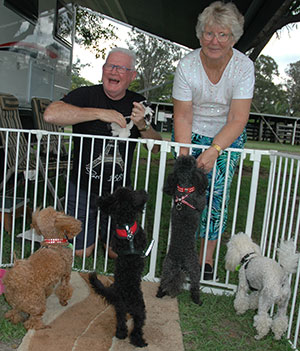 Bob and Jeanette with their toy poodle travelling companions